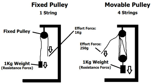 Gears, Pulleys, Sprockets, and Efficiency - jake carson's